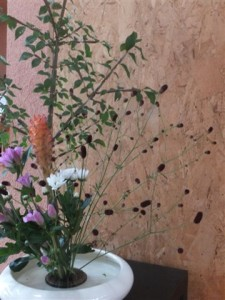 20130909 Flower 006